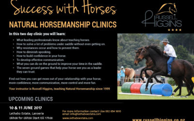 AMAZING RUSSEL HIGGINS SUCCESS WITH HORSES WORKSHOP AT LETHABO ESTATE